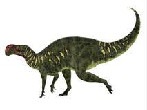 Altirhinus恐龙边外形 免版税库存图片