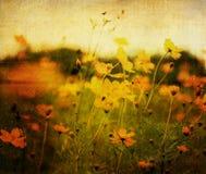 Altmodische Blume lizenzfreie stockfotografie