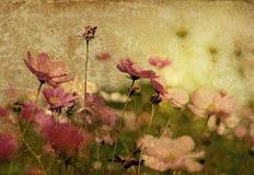 Altmodische Blume lizenzfreie stockbilder