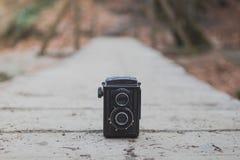 Altmodische Fotografiekamera auf hölzerner Weise im Herbstwald Stockfotografie