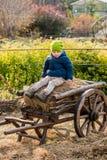 Altmodischer kleiner Junge, der an einem hölzernen Wagen der Weinlese sitzt stockfotos