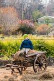 Altmodischer kleiner Junge, der an einem hölzernen Wagen der Weinlese sitzt stockbild