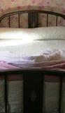 Altmodisches Bett Stockfoto