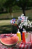 Altmodisches Picknick Stockbild