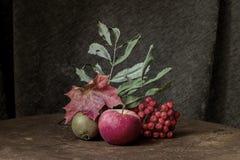 Altmodisches Stillleben der Herbstfrucht und -blätter Lizenzfreie Stockfotografie