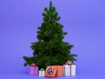Alto árbol de navidad hermoso con las actuales cajas coloridas Imagen de archivo libre de regalías