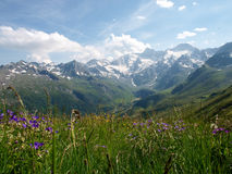 Alto Adige Alps Stock Photos