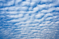 Alto cumulus  Clouds Royalty Free Stock Photography