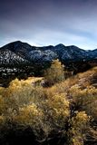 Alto deserto Fotografie Stock