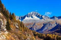 Alto do cuidado - Adamello Trento Itália Foto de Stock Royalty Free