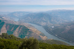 Alto Douro Wine Country's Heritage Stock Photos