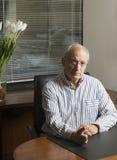 Alto executivo no escritório Imagens de Stock