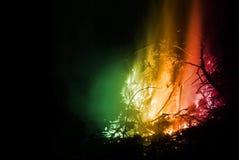 Alto Fire #4 Stock Photo