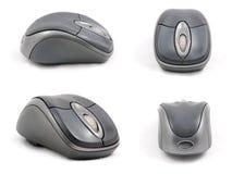 Alto lato del particolare quattro del mouse del calcolatore Immagine Stock Libera da Diritti