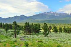 Alto paesaggio alpino del parco nazionale splendido delle montagne rocciose, Colorado fotografie stock