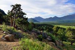 Alto paesaggio alpino del parco nazionale splendido delle montagne rocciose, Colorado immagine stock libera da diritti