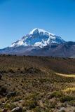 Alto paisaje andino de la tundra en las montañas de los Andes Fotos de archivo libres de regalías