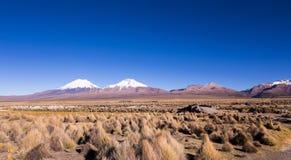 Alto paisaje andino de la tundra en las montañas de los Andes Imágenes de archivo libres de regalías