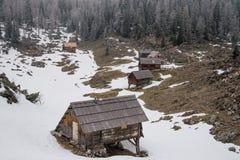 Alto prato alpino in Julian Alps Fotografie Stock Libere da Diritti