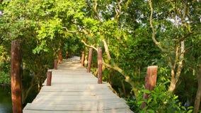 Alto puente de madera sobre el agua en el arbusto en Camboya metrajes