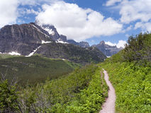 Alto rastro de la elevación, parque nacional de glaciar Imagen de archivo libre de regalías