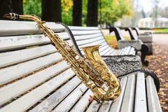 Alto saxophone in autumn Park Royalty Free Stock Image