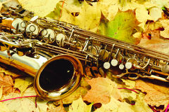 Alto saxophone in autumn Park Royalty Free Stock Images