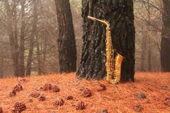 Alto Saxophone de oro en el bosque en el pie del monte Etna La isla de Sicilia, Italia Lugar para el texto tarjeta romántico foto de archivo libre de regalías
