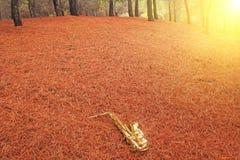 Alto Saxophone de oro en el bosque en el pie del monte Etna T fotos de archivo