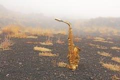 Alto Saxophone Lies de oro en el fondo negro Romántico y imagenes de archivo