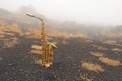 Alto Saxophone Lies de oro en el fondo negro Romántico y foto de archivo