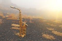 Alto Saxophone Lies de oro en el fondo negro Romántico y imagen de archivo