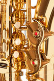 Alto saxophone music elements closeup Stock Images