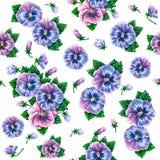 Alto tricolore Dessin coloré de fleurs de pensées d'aquarelle Modèle de fleurs sans couture d'aquarelle Photo stock