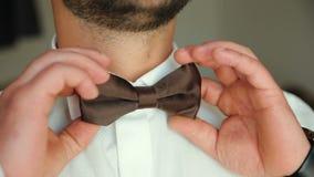 Alto vicino d'uso del farfallino Controlli corretto e regoli la cravatta a farfalla marrone casuale archivi video