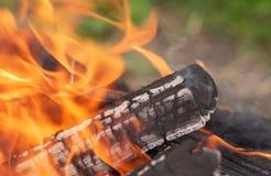 Alto vicino del fuoco e della legna da ardere Fotografia Stock