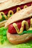 Alto vicino del hot dog Immagini Stock Libere da Diritti