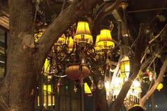 Alto vicino del lampadario a bracci Immagini Stock