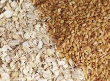 Alto vicino del seme di lino e della farina d'avena Immagini Stock
