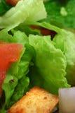 Alto vicino dell'insalata Fotografie Stock Libere da Diritti
