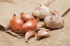 Alto vicino della cipolla e dell'aglio Immagini Stock