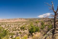 Alto yermo del desierto Fotos de archivo libres de regalías