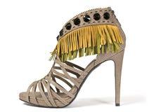 Alto zapato de la mujer Imagen de archivo libre de regalías