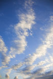 Altocumulus Clouds Stock Image