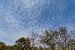 Altocumulus clouds above a mountain Royalty Free Stock Images