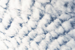 Altocumulus  Clouds  in cloudscape Royalty Free Stock Photo