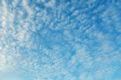 Altocumulus clouds - natural skyscape background Stock Photos
