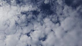 Altocumulus Clouds Time Lapse 08. A time lapse video showing the motion and transformation of altocumulus clouds stock footage
