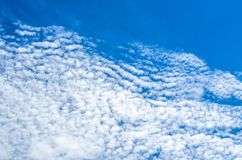 Altocumulus cloudscape on blue blue sky, Beautiful Cirrocumulus or Altocumulus on the middle altitude layer. Royalty Free Stock Images