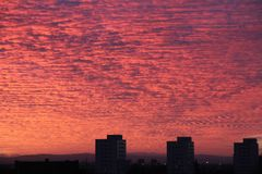 Altocumulus over Mancherster during sunset. stock image